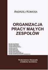 Organizacja pracy małych zespołów EKONOMIK