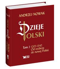 Dzieje Polski. Tom 2.