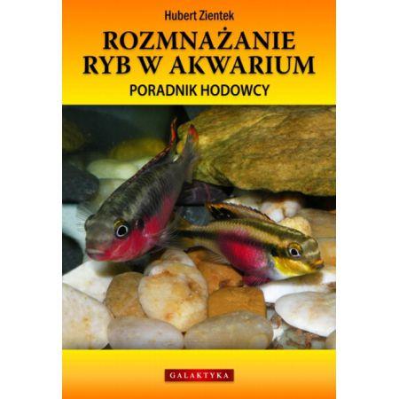 Rozmnażanie ryb w akwarium