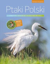 Encyklopedia ilustrowana. Ptaki Polski