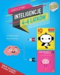 AIM. Ćwiczymy inteligencję 4-6 latków pakiet